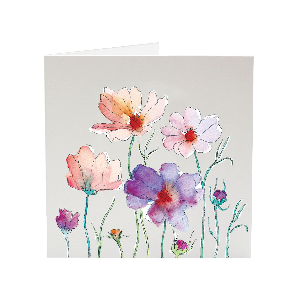 my favourite flower cosmos for monica greeting card  sj