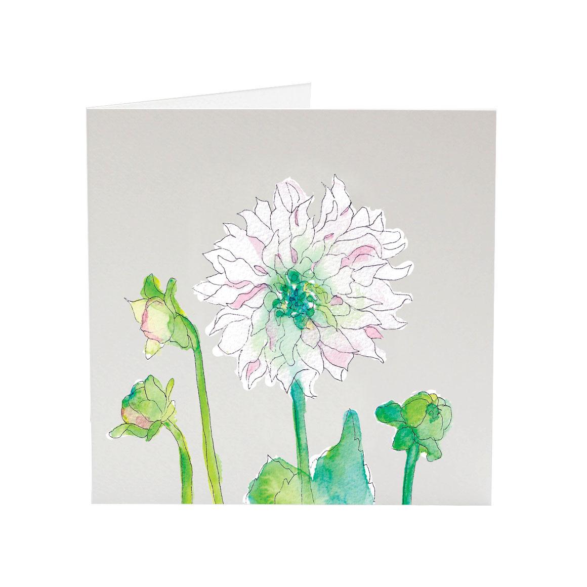my favourite flower dahlias for polly greeting card  sj