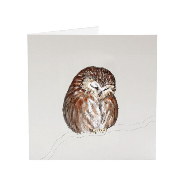 Archie the Tawny Owl greeting card by Sarah Jane Vickery