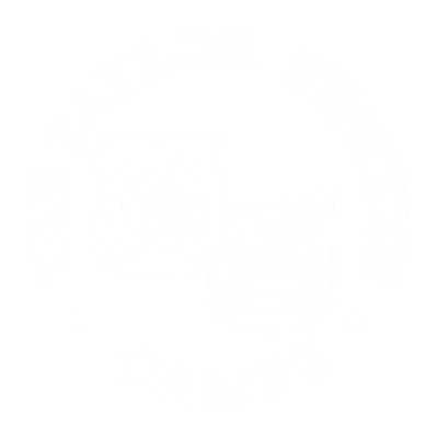 The taylor statten camps logo
